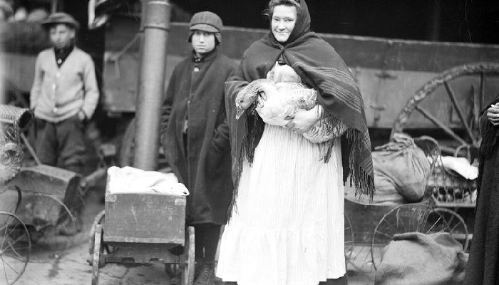 Woman wearing large apron holding a goose in her arms stands with two boys, November 8, 1912